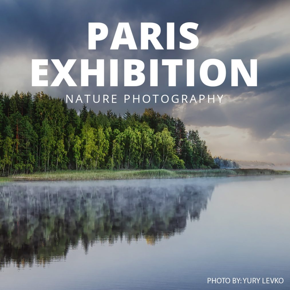From rolling mountains to predators stalking their next meal, join us at Studio Galerie B&B for a 'Nature Photography' expo by GuruShots.
